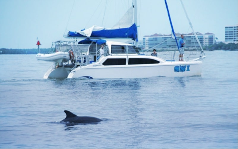 Marco Island Boat Rental Reviews