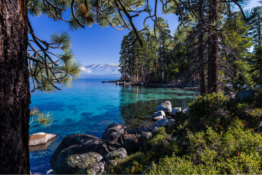 lake tahoe header